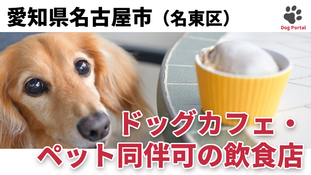 名古屋市名東区のドッグカフェ