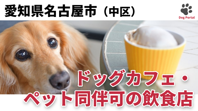名古屋市中区のドッグカフェ