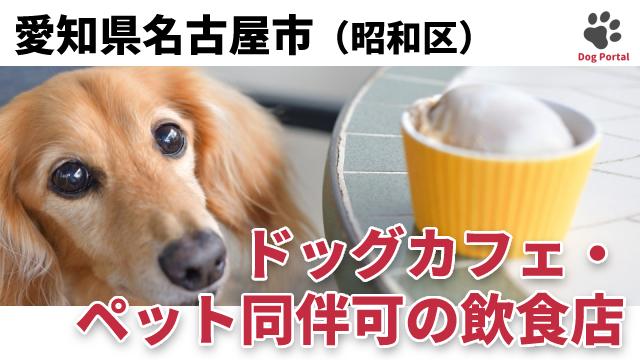 名古屋市昭和区のドッグカフェ
