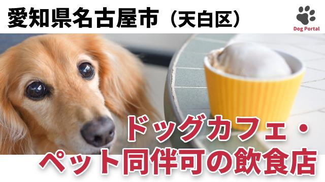 名古屋市天白区のドッグカフェ