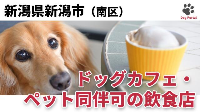 新潟市南区のドッグカフェ
