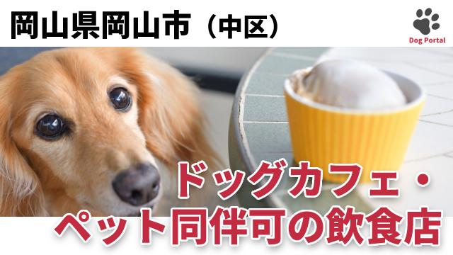 岡山市中区のドッグカフェ
