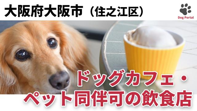 大阪市住之江区のドッグカフェ