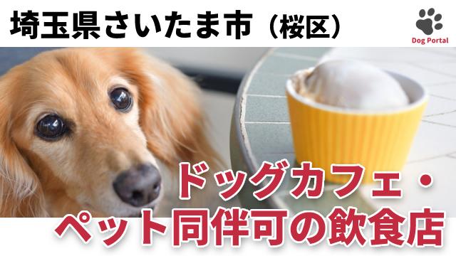 さいたま市桜区のドッグカフェ