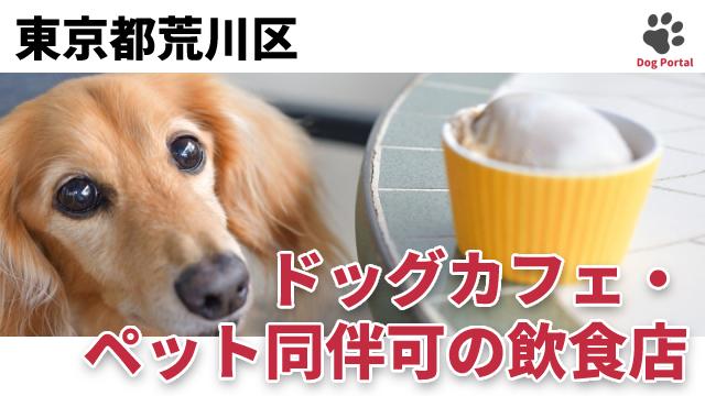 東京都荒川区のドッグカフェ