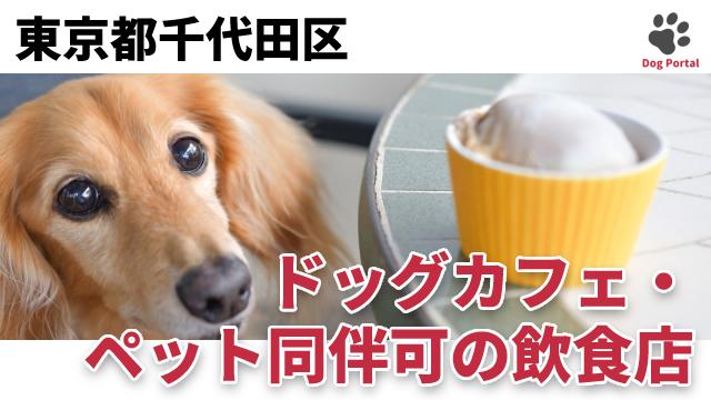 東京都千代田区のドッグカフェ