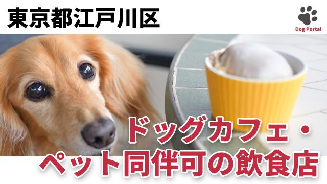 東京都江戸川区のドッグカフェ
