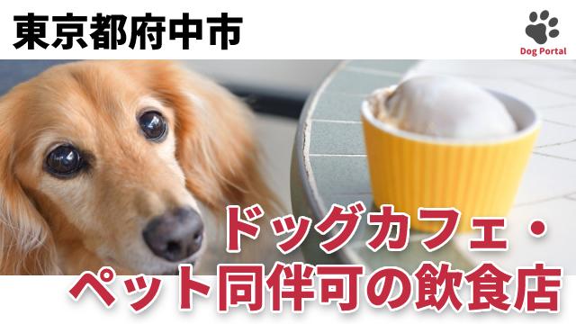 東京都府中市のドッグカフェ