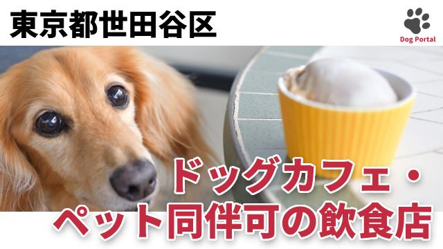東京都世田谷区のドッグカフェ
