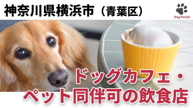 横浜市青葉区のドッグカフェ