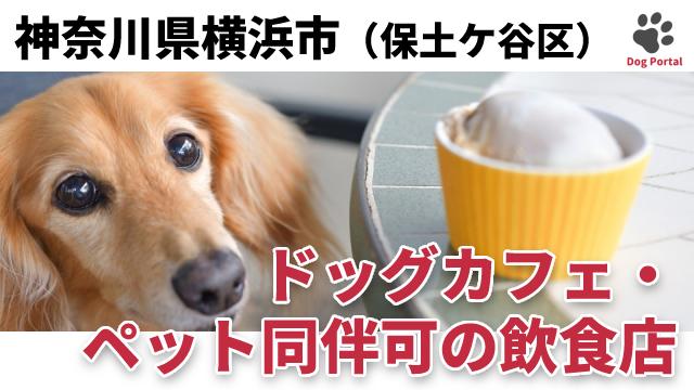 横浜市保土ケ谷区のドッグカフェ