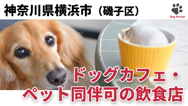 横浜市磯子区のドッグカフェ