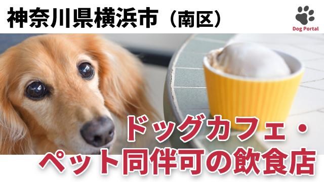 横浜市南区のドッグカフェ