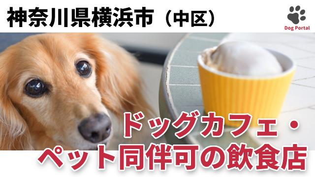 横浜市中区のドッグカフェ