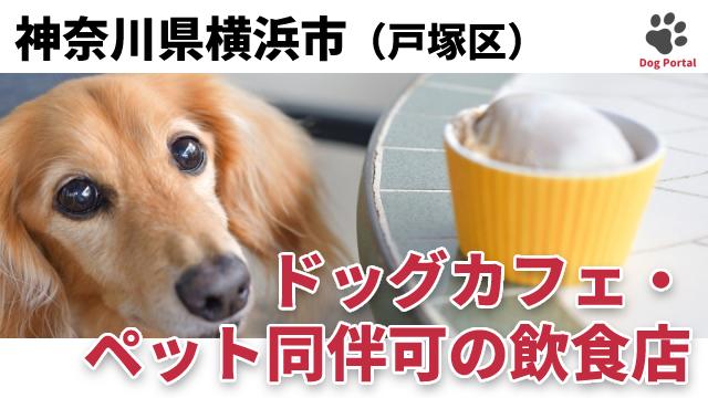 横浜市戸塚区のドッグカフェ