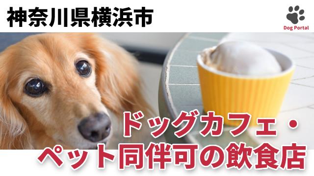 横浜市のドッグカフェ