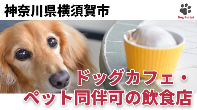 横須賀市のドッグカフェ
