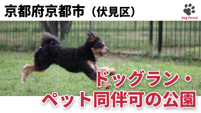 京都市伏見区のドッグラン・公園