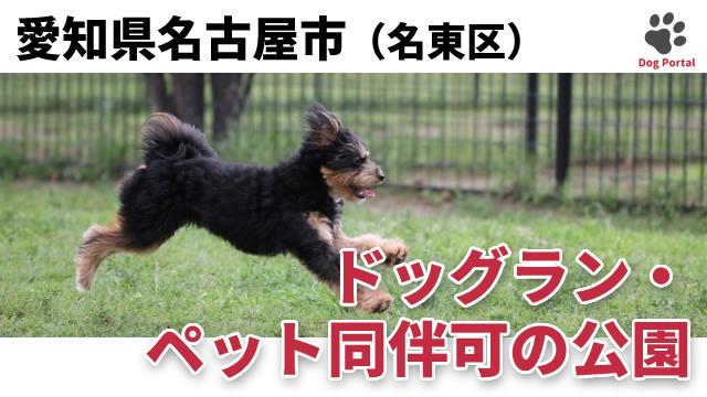 名古屋市名東区のドッグラン・公園