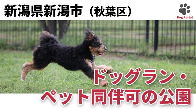 新潟市秋葉区のドッグラン・公園