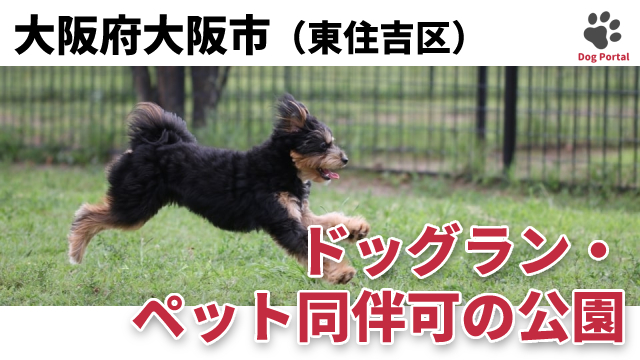 大阪市東住吉区のドッグラン・公園