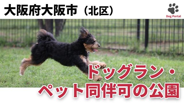 大阪市北区のドッグラン・公園