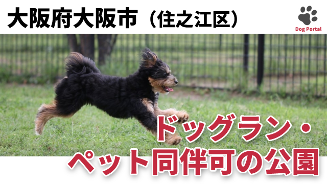 大阪市住之江区のドッグラン・公園