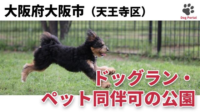 大阪市天王寺区のドッグラン・公園
