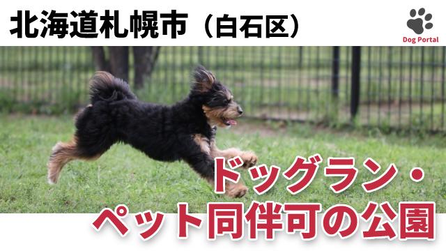 札幌市白石区のドッグラン・公園
