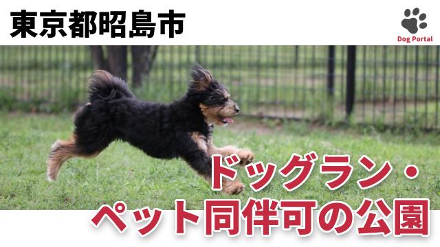 東京都昭島市のドッグラン・公園