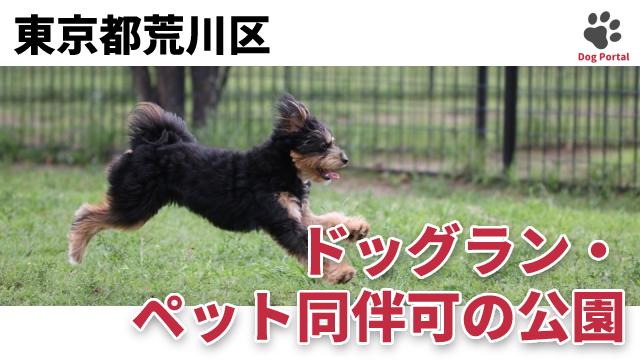 東京都荒川区のドッグラン・公園