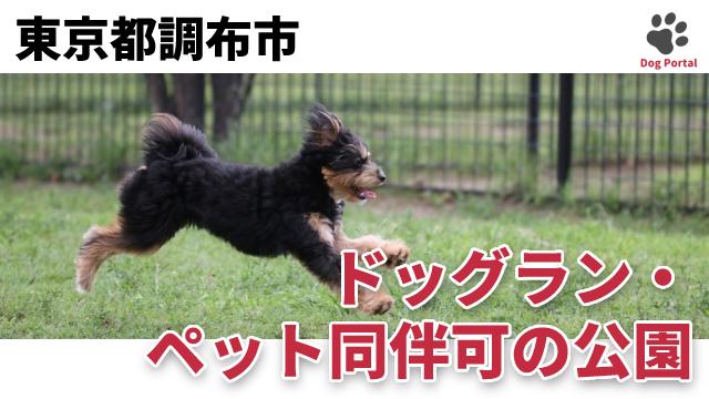 東京都調布市のドッグラン・公園
