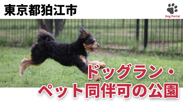 東京都狛江市のドッグラン・公園