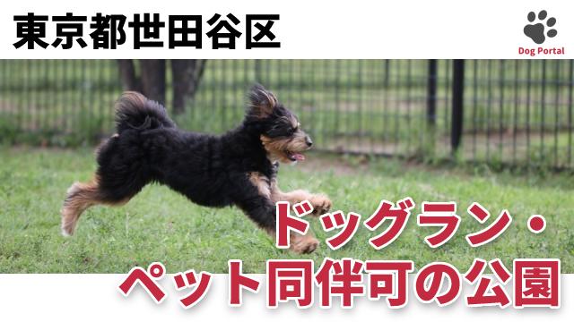 東京都世田谷区のドッグラン・公園