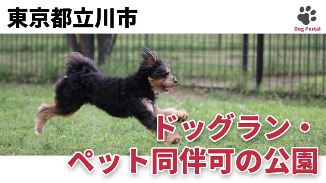 東京都立川市のドッグラン・公園