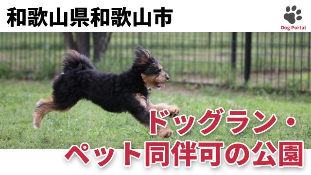 和歌山市のドッグラン・公園
