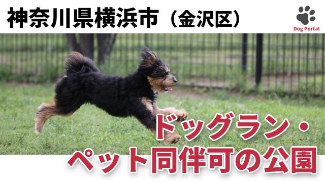 横浜市金沢区のドッグラン・公園