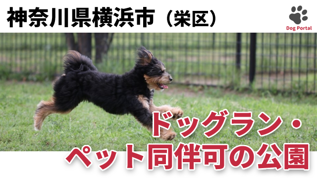 横浜市栄区のドッグラン・公園