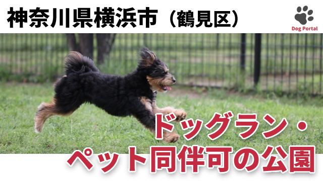 横浜市鶴見区のドッグラン・公園