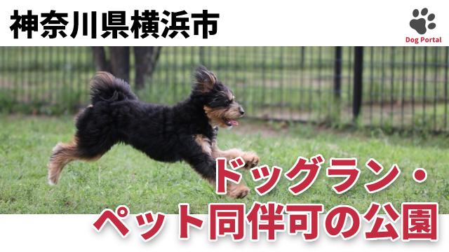 横浜市のドッグラン・公園