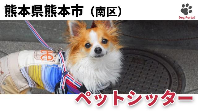 熊本市南区のペットシッター