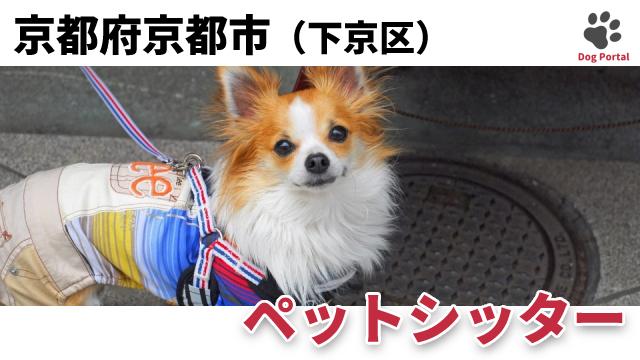 京都市下京区のペットシッター