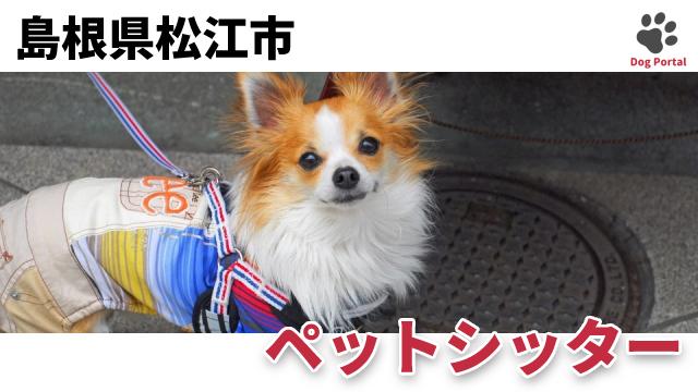 松江市のペットシッター