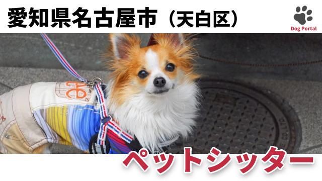 名古屋市天白区のペットシッター