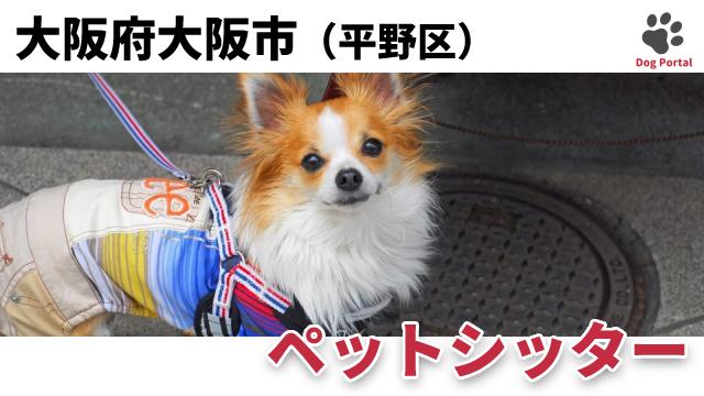 大阪市平野区のペットシッター