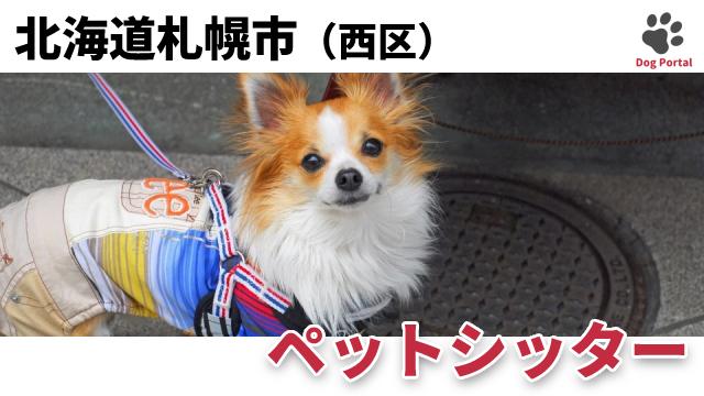 札幌市西区のペットシッター