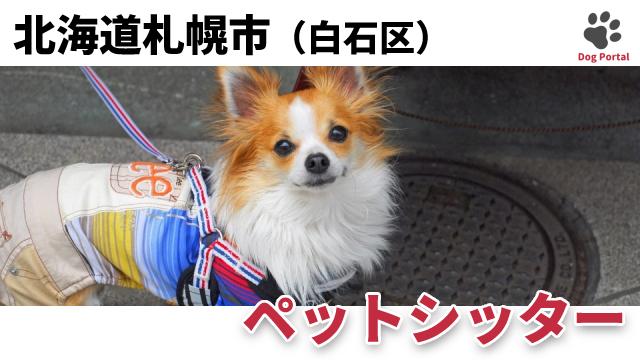 札幌市白石区のペットシッター