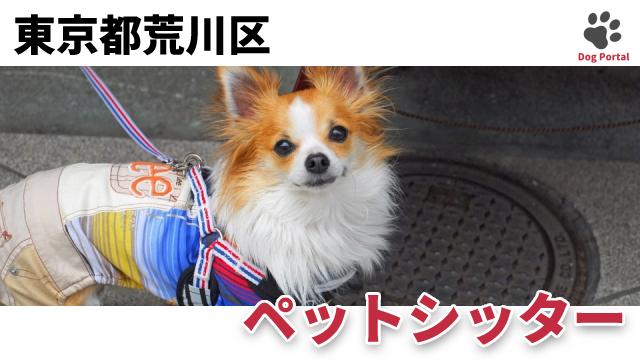 東京都荒川区のペットシッター