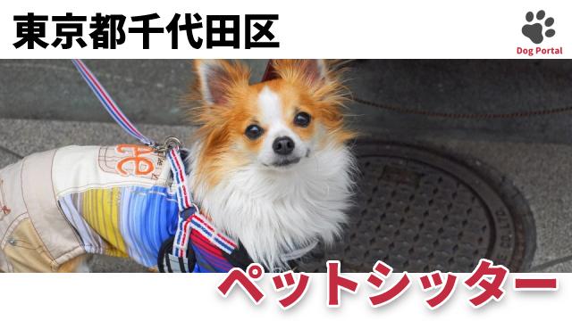 東京都千代田区のペットシッター