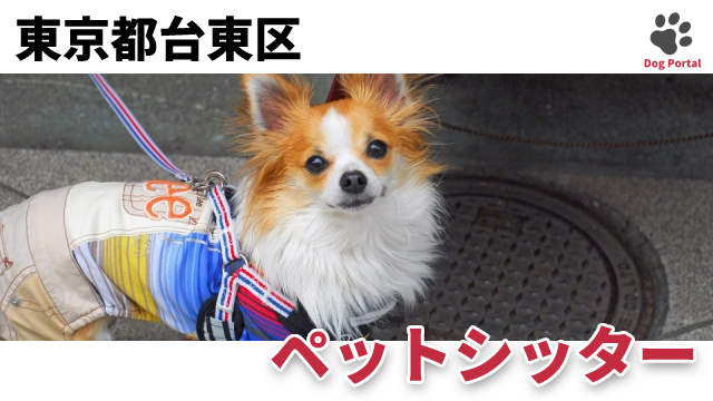 東京都台東区のペットシッター